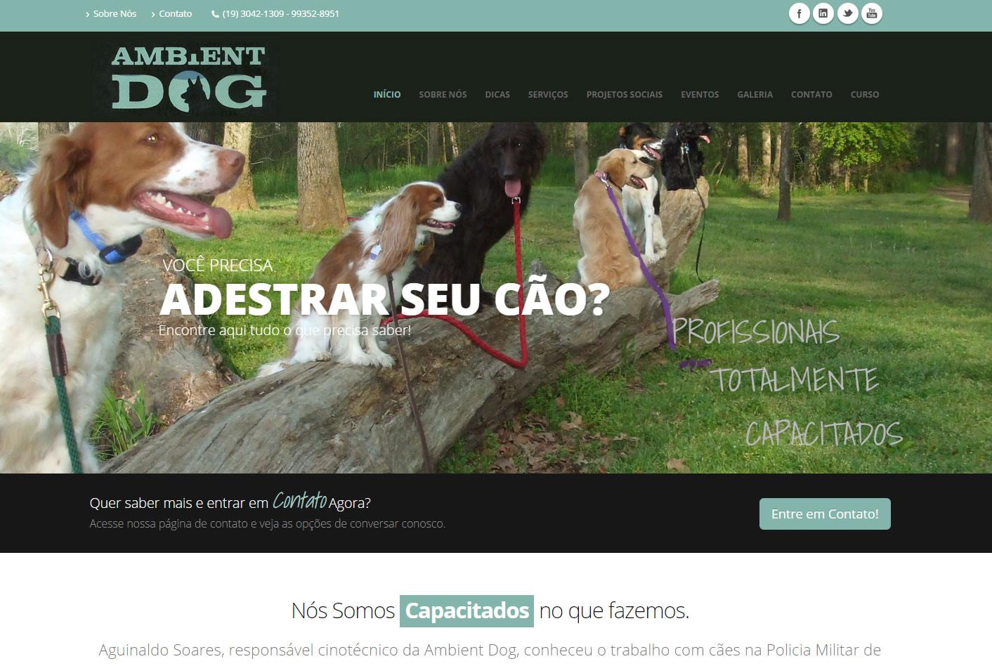 Cliente de Criação de Sites em Piracicaba - Ambient Dog